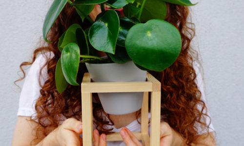 Just do it – Pflanzenhalter