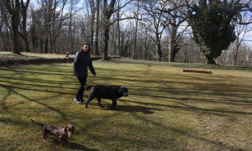 Tägliche Rundgänge im Garten und im Wald stehen auf der Tagesordnung.