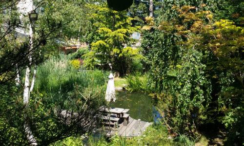 Teiche mit Regenbogen- und Lachsforellen sind ebenso im Anwesen integriert. Heimische Pflanzen und exotische Gewächse finden hier ein optimales Klima vor.