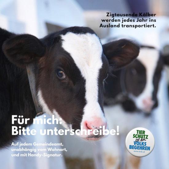 Ihre Unterschrift gegen Tierleid